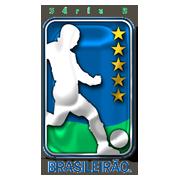championnat bresilien