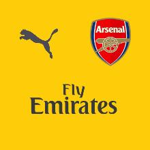 Arsenal 2016 2017 couleurs du maillot exterieur