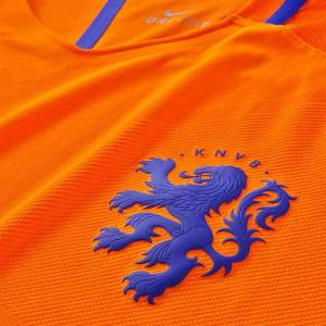 Hollande 2016 blason maillot domicile lion relief