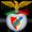 Les maillots de foot de Benfica