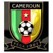 blason cameroun